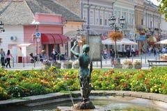 novi SAD serbia Royaltyfri Foto