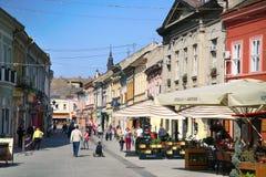 NOVI SAD SERBIEN - APRIL 03: Den Dunavska gatan är en det äldsta set Royaltyfri Bild