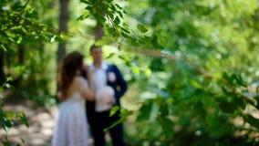 Novia caucásica y novio que presentan en la madera de pino almacen de metraje de vídeo