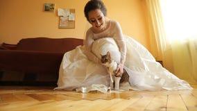 Novia con su gato querido en su día de boda metrajes