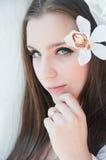 Novia de la belleza Fotografía de archivo libre de regalías