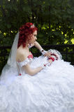 Novia de la boda Imágenes de archivo libres de regalías