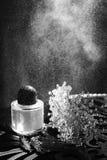 Novia de los accesorios de las mujeres Bolso, zapatos, anillos, perfume nupcial imagen de archivo libre de regalías