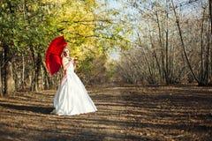 Novia en bosque del hada-cuento en otoño Imágenes de archivo libres de regalías