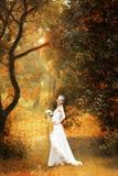 Novia en bosque del otoño Foto de archivo libre de regalías