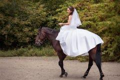 Novia en caballo Imagen de archivo libre de regalías