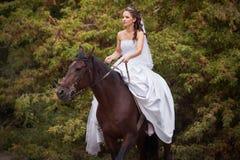 Novia en caballo Foto de archivo
