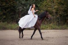 Novia en caballo Fotografía de archivo libre de regalías