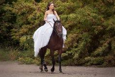 Novia en caballo Fotos de archivo
