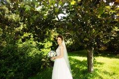Novia en vestido de boda de la moda en fondo natural Un retrato hermoso de la mujer en el parque fotos de archivo