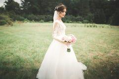 Novia hermosa que presenta en vestido de boda al aire libre Imagenes de archivo