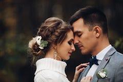 Novia hermosa y novio que celebran la boda en la estación del otoño imagenes de archivo
