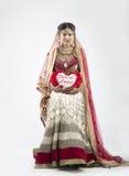 Novia india hermosa en fondo gris Fotografía de archivo libre de regalías