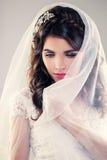 Novia magnífica con maquillaje de la moda y el peinado de la boda Foto de archivo libre de regalías