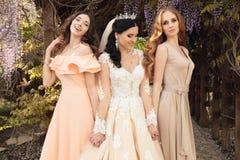 Novia magnífica en el vestido de boda lujoso, presentando con las damas de honor hermosas en vestidos elegantes Foto de archivo libre de regalías