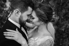 Novia magnífica y novio elegante que abrazan y que besan suavemente el outd fotografía de archivo libre de regalías