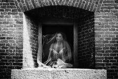 Novia morena del cuento de hadas magnífico debajo del velo que mira hacia fuera medieva Fotos de archivo