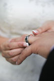 Novia que pone en el anillo de bodas Fotos de archivo libres de regalías