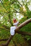 Novia que se sienta en una ramificación de árbol Fotos de archivo libres de regalías