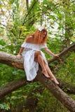 Novia que se sienta en una ramificación de árbol Imagen de archivo libre de regalías