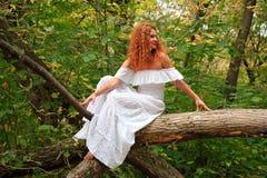 Novia que se sienta en una ramificación de árbol en bosque del otoño Fotos de archivo