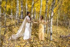 Novia vietnamita asiática con la madre en vestidos de boda vietnamitas tradicionales en los árboles amarillos del álamo temblón d imagen de archivo libre de regalías