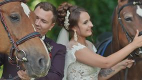 Novia y novio al aire libre en un parque verde entre caballos Un par de la boda que frota ligeramente animales stroll Día de boda almacen de video