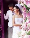Novia y novio cerca de rosas rosadas Imagen de archivo libre de regalías