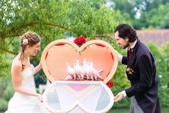 Novia y novio de la boda con las palomas Fotografía de archivo libre de regalías