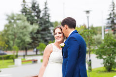 Novia y novio en el día de boda que caminan al aire libre Abarcamiento feliz de los recienes casados Pares cariñosos Foto de archivo libre de regalías