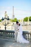 Novia y novio en el jardín de Tuileries de París Foto de archivo