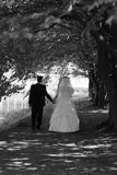 Novia y novio en el parque Imagenes de archivo