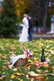 Novia y novio felices en parque en comida campestre Fotos de archivo