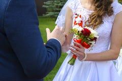 Novia y novio jovenes hermosos y felices en vestido de boda Fotografía de archivo libre de regalías