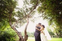 Novia y novio Kissing en el parque fotografía de archivo