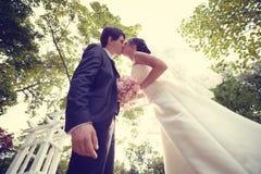 Novia y novio Kissing en el parque imagen de archivo