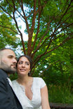 Novia y novio Marriage Concept Fotos de archivo libres de regalías