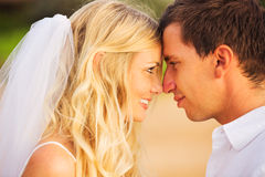 Novia y novio, pareja nuevamente casada romántica que se besa en el  Imágenes de archivo libres de regalías