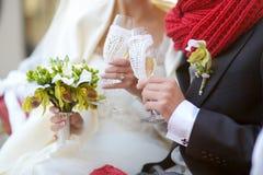 Novia y novio que sostienen los vidrios del champán Imágenes de archivo libres de regalías