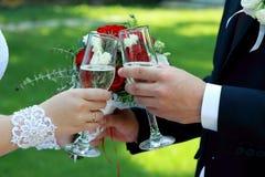 Novia y novio que sostienen los vidrios del champán - imagen común Fotografía de archivo