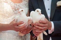 Novia y novio que sostienen palomas Imagenes de archivo