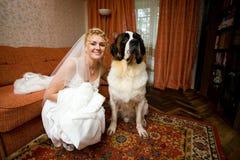 Novia y perro Foto de archivo libre de regalías