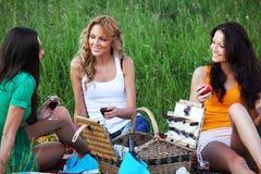 Novias en comida campestre fotos de archivo libres de regalías