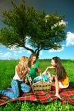 Novias en comida campestre Imagen de archivo