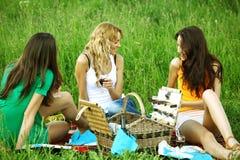 Novias en comida campestre Foto de archivo libre de regalías