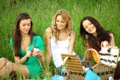 Novias en comida campestre Fotografía de archivo