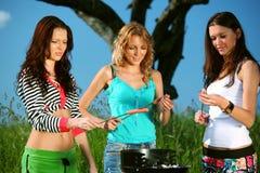 Novias en comida campestre Imagen de archivo libre de regalías