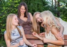Novias jovenes y atractivas felices imágenes de archivo libres de regalías