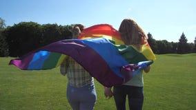 Novias que caminan a través del césped que sostiene la bandera del lgbt almacen de video