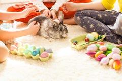 Novias que juegan con el conejo Imagen de archivo libre de regalías